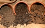 Soil Cultivation – Tips for Consolidation of Garden Soil