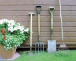Best Tools for Gardening – Gardening Weeding Tools