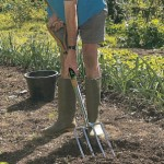 Starting a Garden – Understanding Your Garden Soil