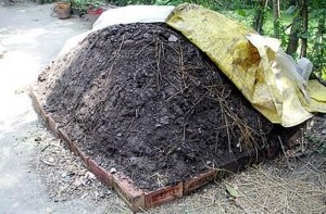how to make a compost heap