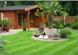 lawn treatment for lawn weeds