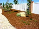 Gardening: Soil Cultivation – Mulching