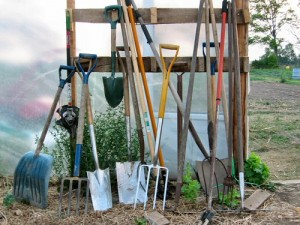 tools for gardening
