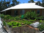 Preparing a Vegetable Garden – Expert Tips