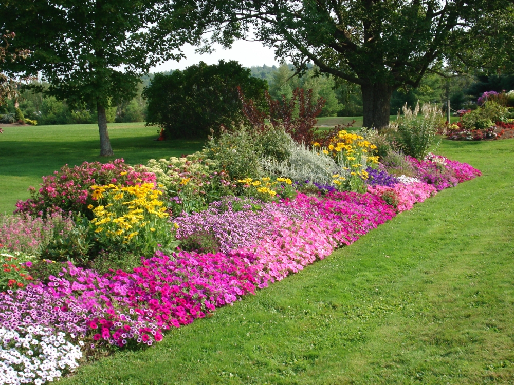 Flower landscape design home design for Front garden bed ideas