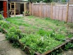 Landscaping Tips for Restoring a Neglected Garden