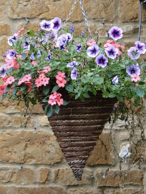 Container gardening ideas unusual hanging flower baskets for Container gardening ideas