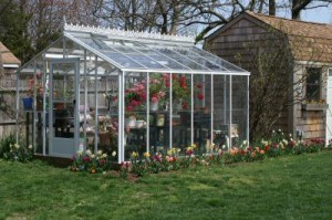 where to site a greenhouse
