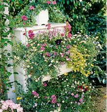 patio pots and planters - can be used beneath windows