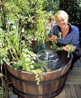 Water features water gardening ideas for Water garden ideas