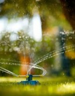 Watering Grass and Lawn Feed Fertilizers