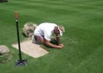Basic Lawn Repairs to Improve Garden Lawns