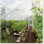 planning a greenhouse
