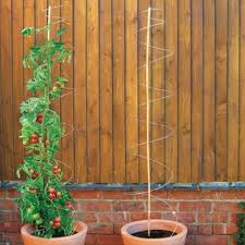 plant supports
