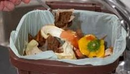 The Composting Process - Recycling and Home Composting
