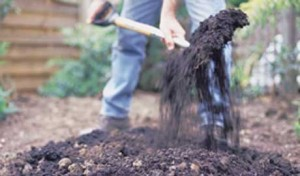 digging can be detrimental to the soil