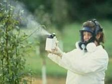 best spraying practice - garden pesticide sprays