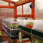 Greenhouse Accessories: Heated Propagator