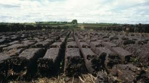 Raw Materials in Soilless Composts