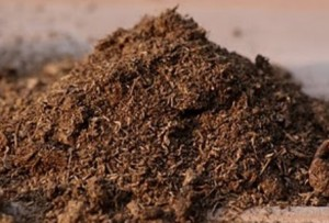 development of soilless composts