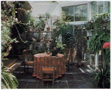 conservatory design built out and at a lower level - ideal as extra room but also for growing plants