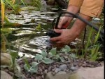 How to Maintain a Garden Pond in Winter
