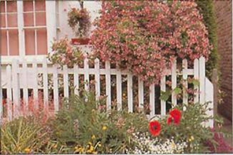 Picket fences and hedges are attractive ways to contain a cottage garden, but both require regular maintenance