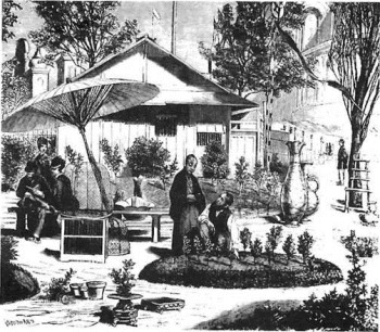 first appearance of bonsai in Europe at the World Fair in Paris in 1878