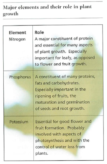 major elements and their role in plant growth