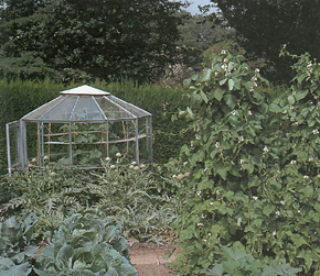 a dome shaped greenhouse is very efficient at light capture but inefficient in its use of space