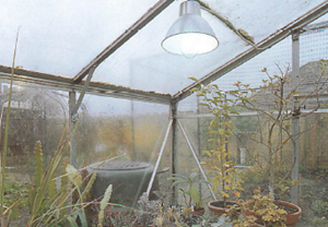 greenhouse lighting is not essential but if you do use it, be sure that its output really is adequate to make a significant improvement
